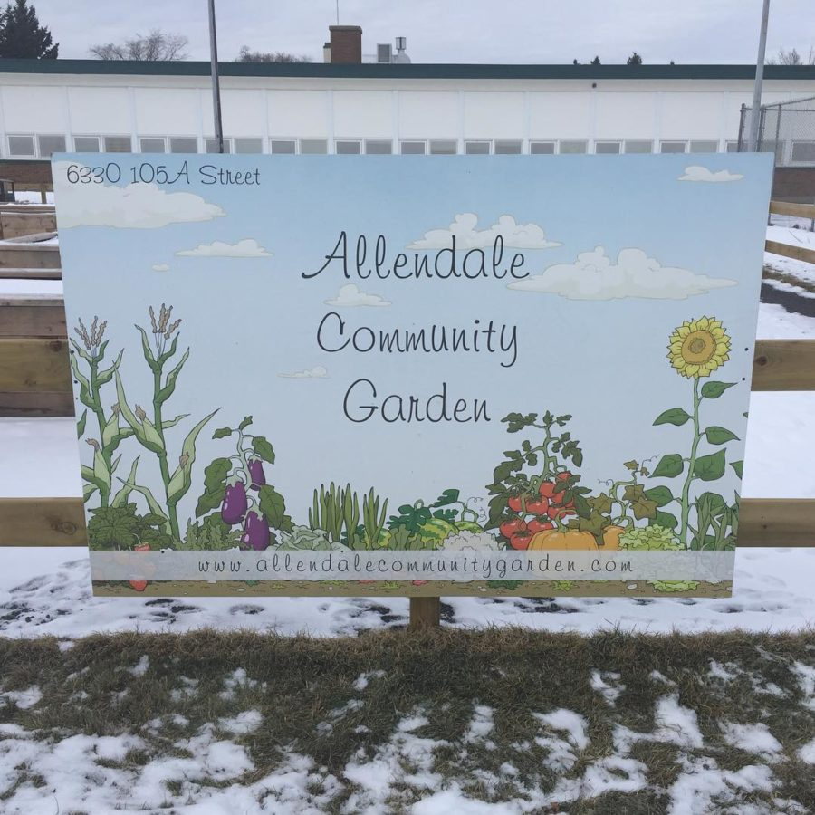 Click for more information on Allendale's community garden.